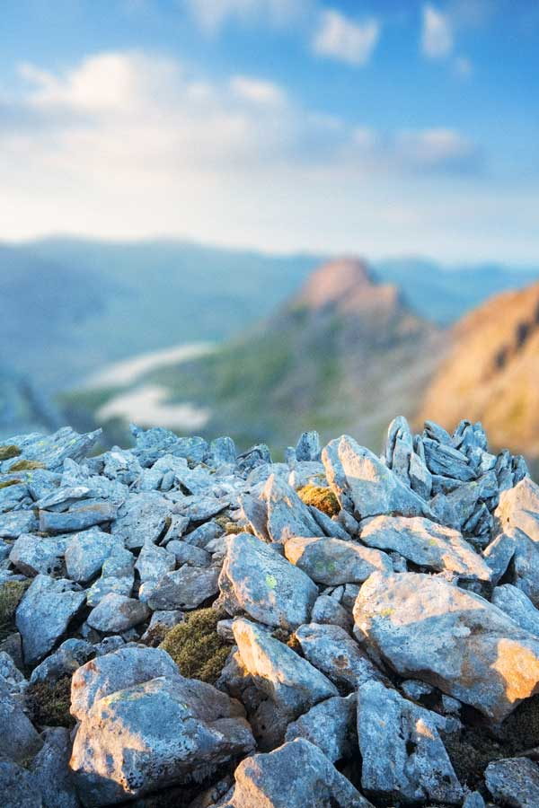 Shallow depth of field   Photo:  James Osmond/Alamy