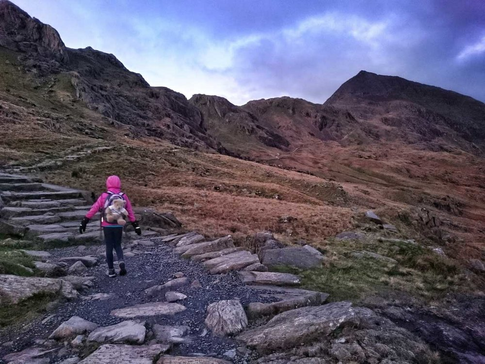 Climbing the early stages of the Pyg Track towards the pyramid peak of Crib Goch.