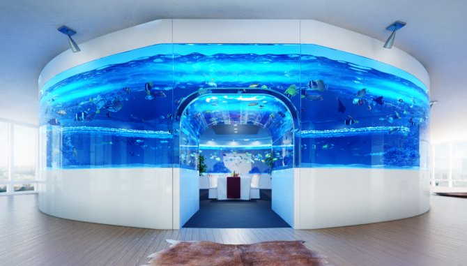 is this the ultimate aquarium? — practical fishkeeping magazine