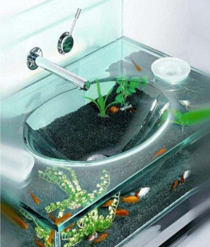 15 Ridiculous Fish Tanks Practical Fishkeeping Magazine