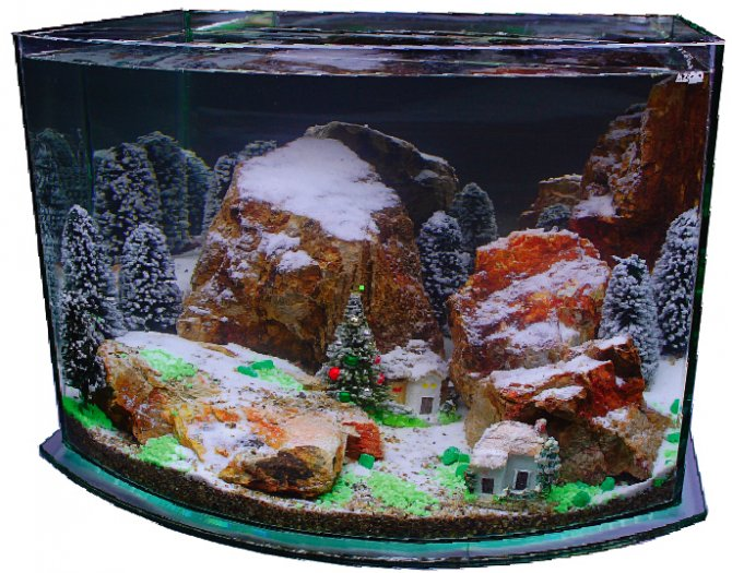 why should your favourite hobby miss out on the christmas sparkle tom messenger savours the festive spirit to set up a seasonal aquarium - Christmas Fish Tank Decorations