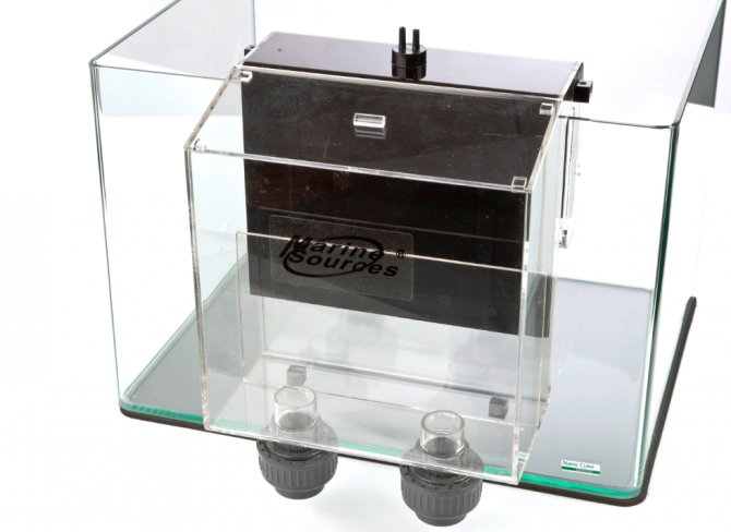 Review: Marine sump overflow box from All Pond Solutions — Practical Fishkeeping Magazine