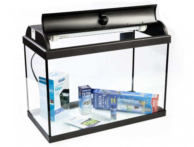 Review interpet aquaverse complete aquarium kit 65 litre for Aquarium boule 20 litres