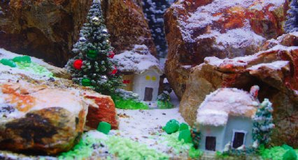 many thanks to unipac and alf for supplying the tank and decor i used in this set up - Christmas Aquarium Decorations