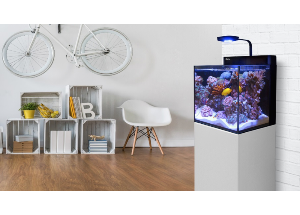 The new Red Sea MAX Nano aquarium.
