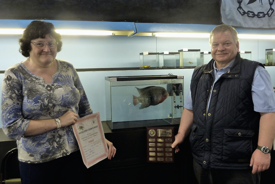 Steve and Debbie Edwards with their champion cichlid.