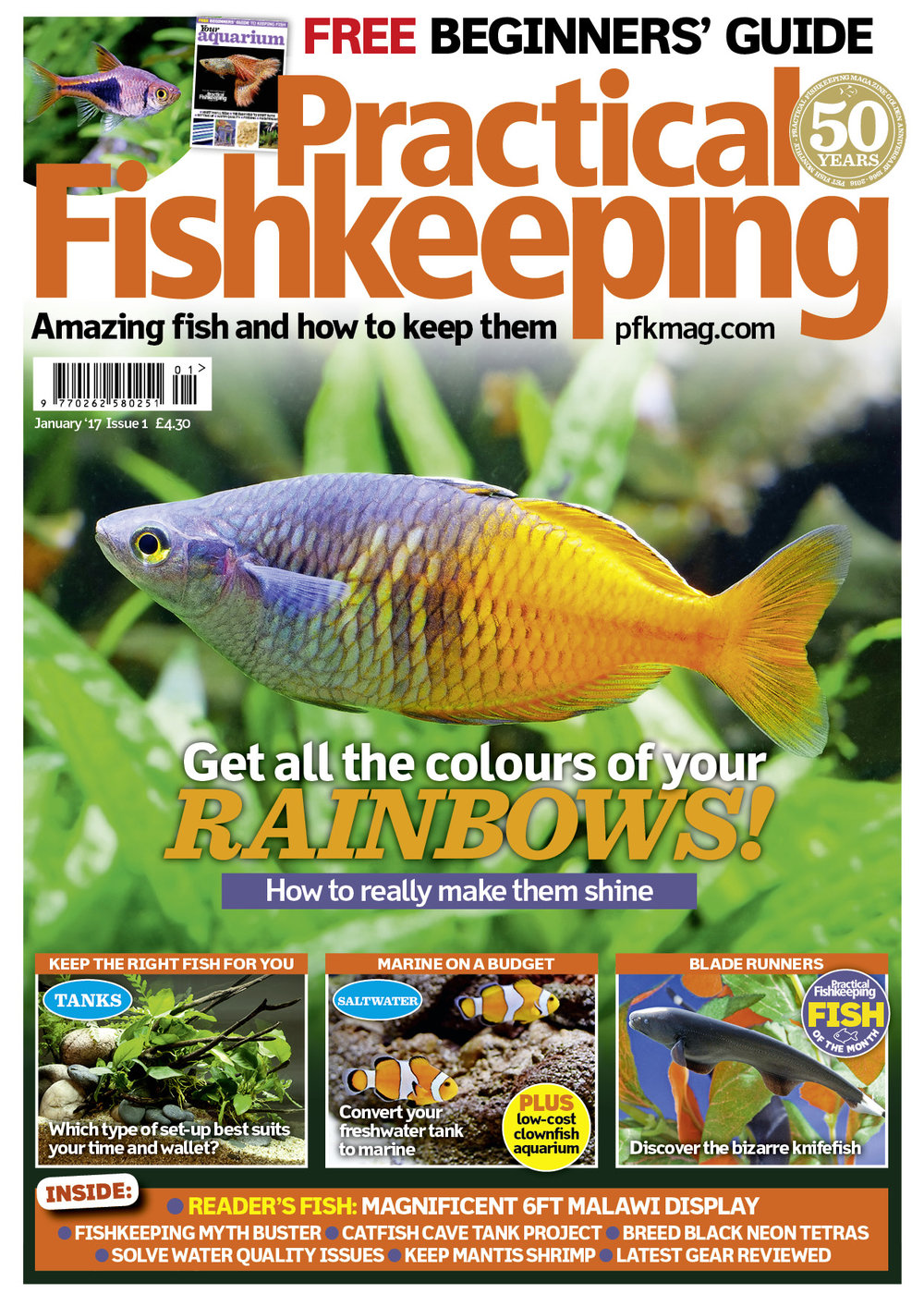 NEW-LOOK COVER!  Our January 2017 issue comes with a FREE Beginners guide. The main issue is packed full of features and advice including: Marine on a budget, converting your freshwater tank, a readers' magnificent 6ft Malawi display, breed black Neon tetras and all your FAQs answered.