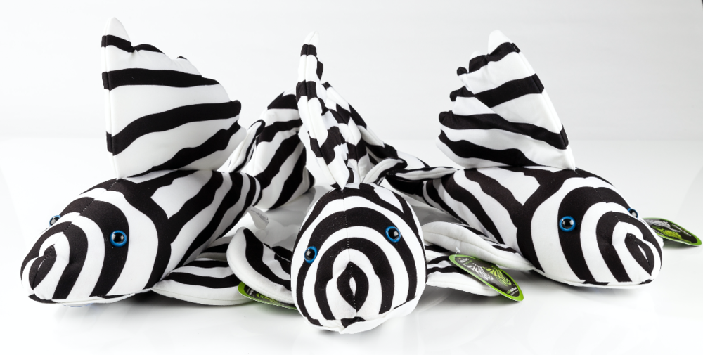 We're giving away two of these giant cuddly Zebra plecs. Sorry folks, but we're keeping the third one for ourselves!