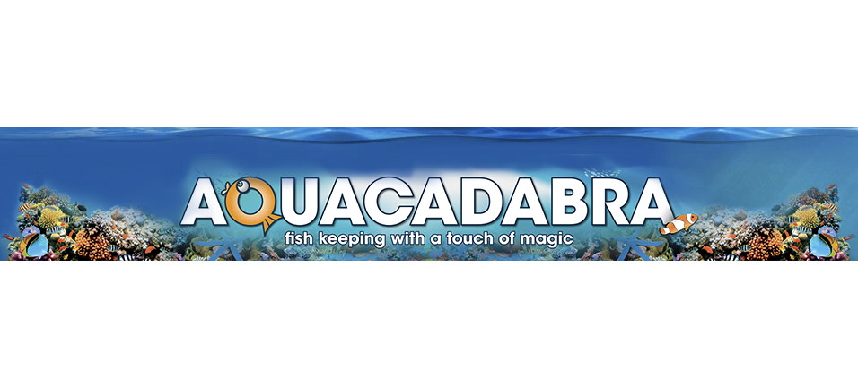Online aquatic supplier Aquacadabra has a vacancy on its team.
