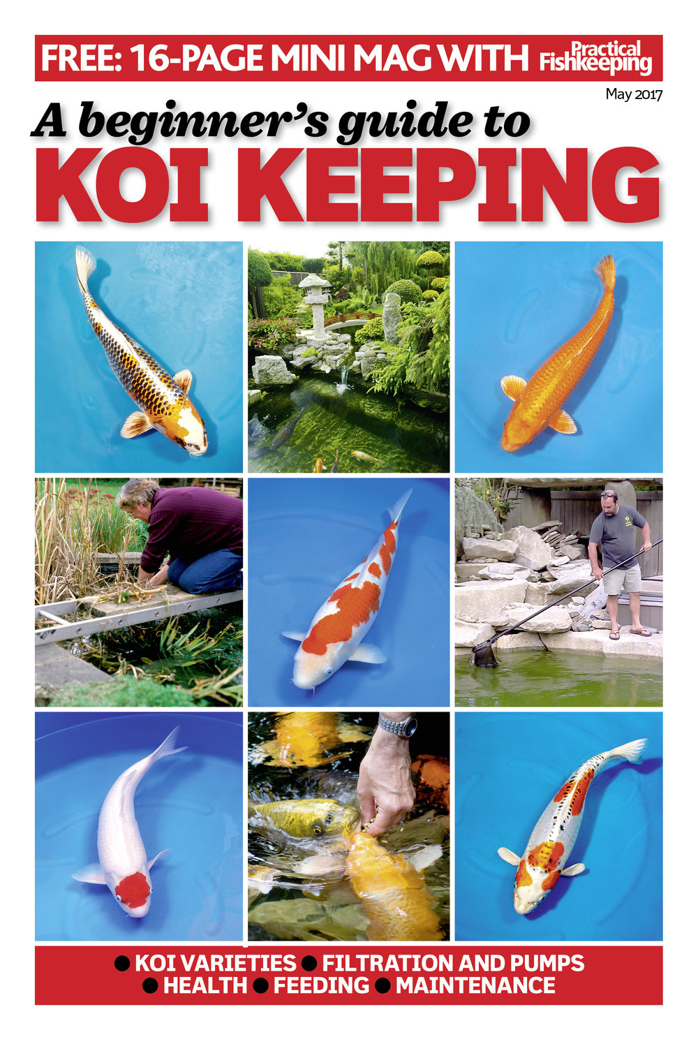 Look for the 16-page Koi supplement.