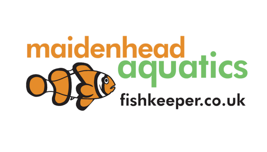 Check out the latest job vacancies at Maidenhead Aquatics.