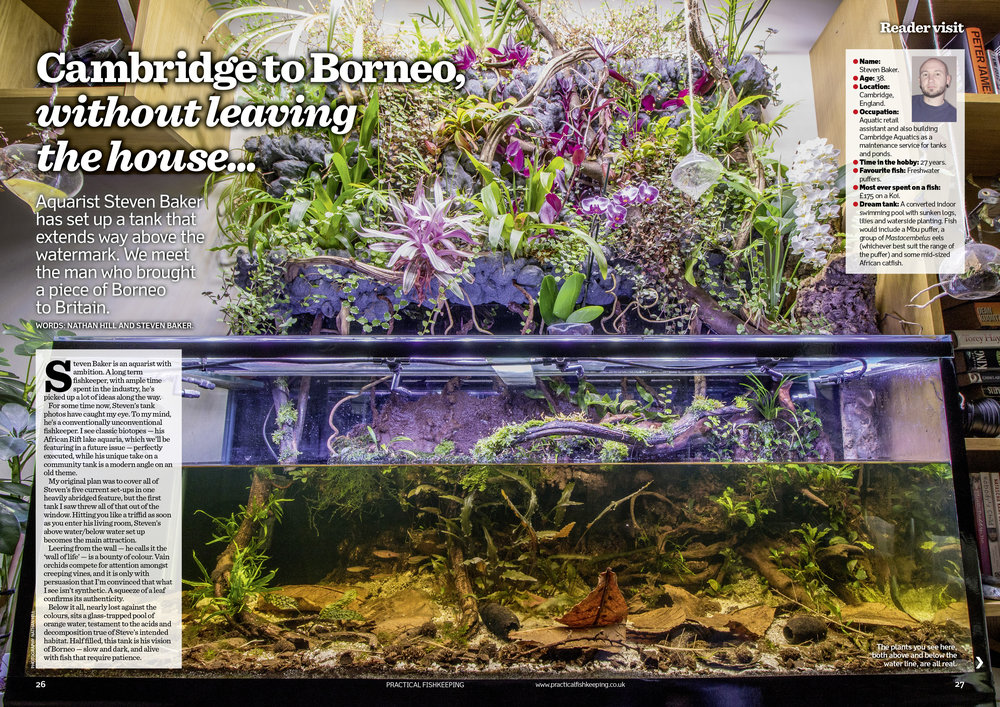 We visit a readers jaw-dropping Borneo inspired tank.