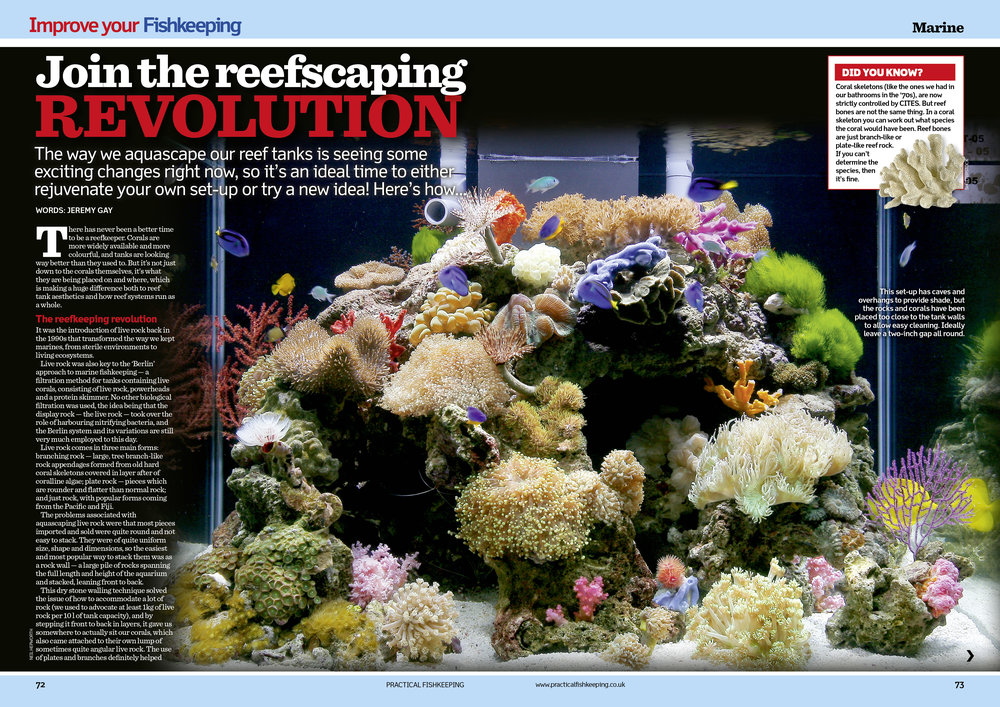 ...and ask's if it is time to join the reefscaping revolution?