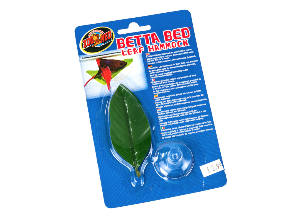 a perfect place for your fighter to rest his little fins  u2014 the betta bed leaf review  betta bed leaf hammock  u2014 practical fishkeeping magazine  rh   practicalfishkeeping co uk