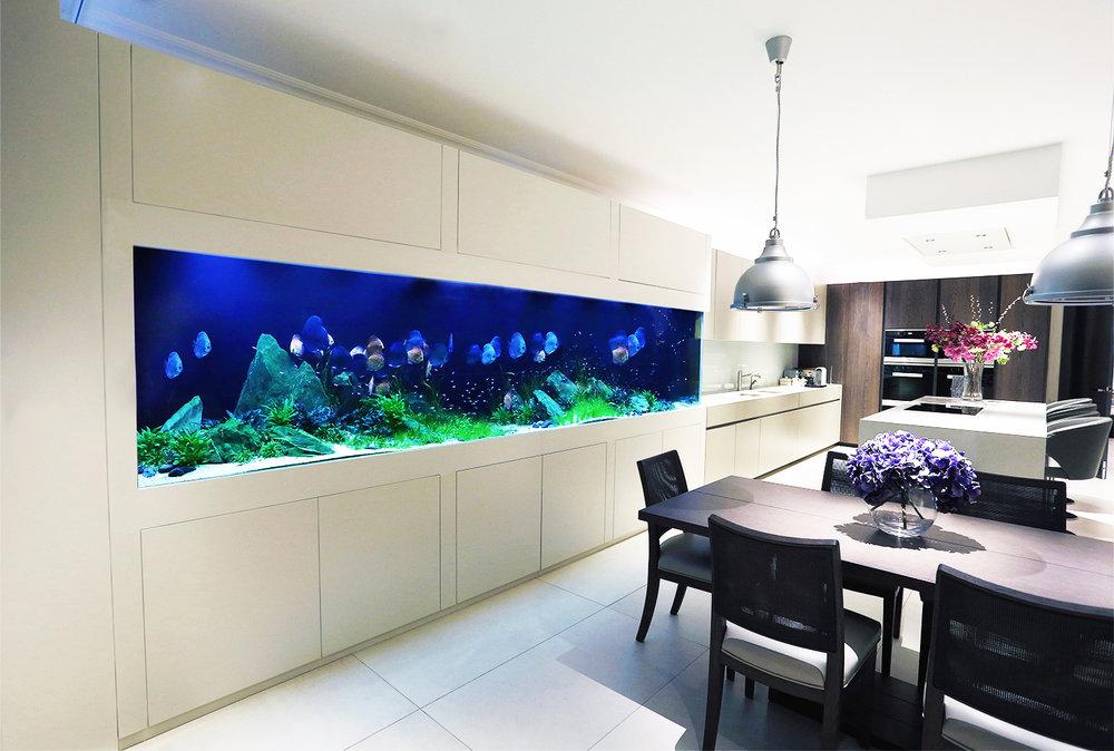 aquarium-architecture-custom-discus-aquarium01white.jpg