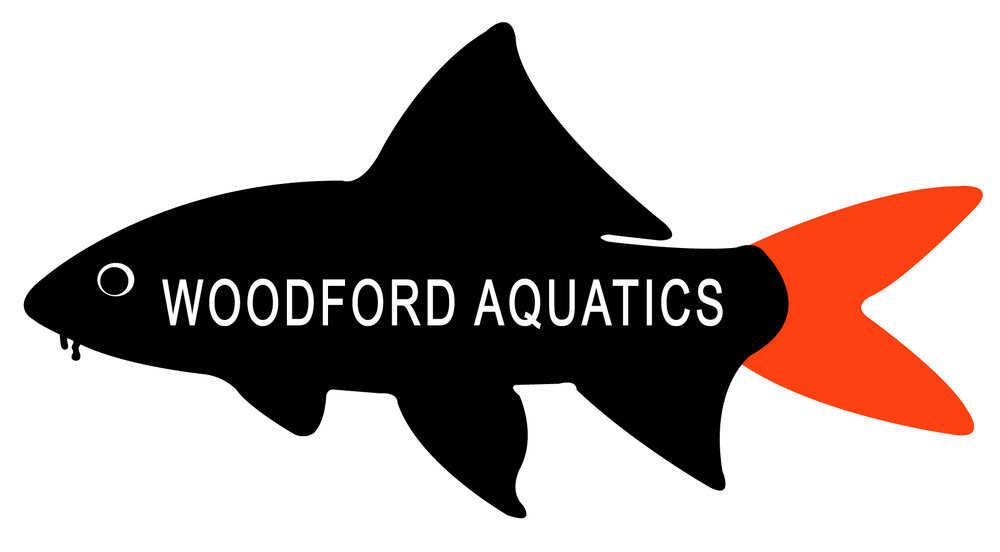WoodfordAquatics(withwording).jpg