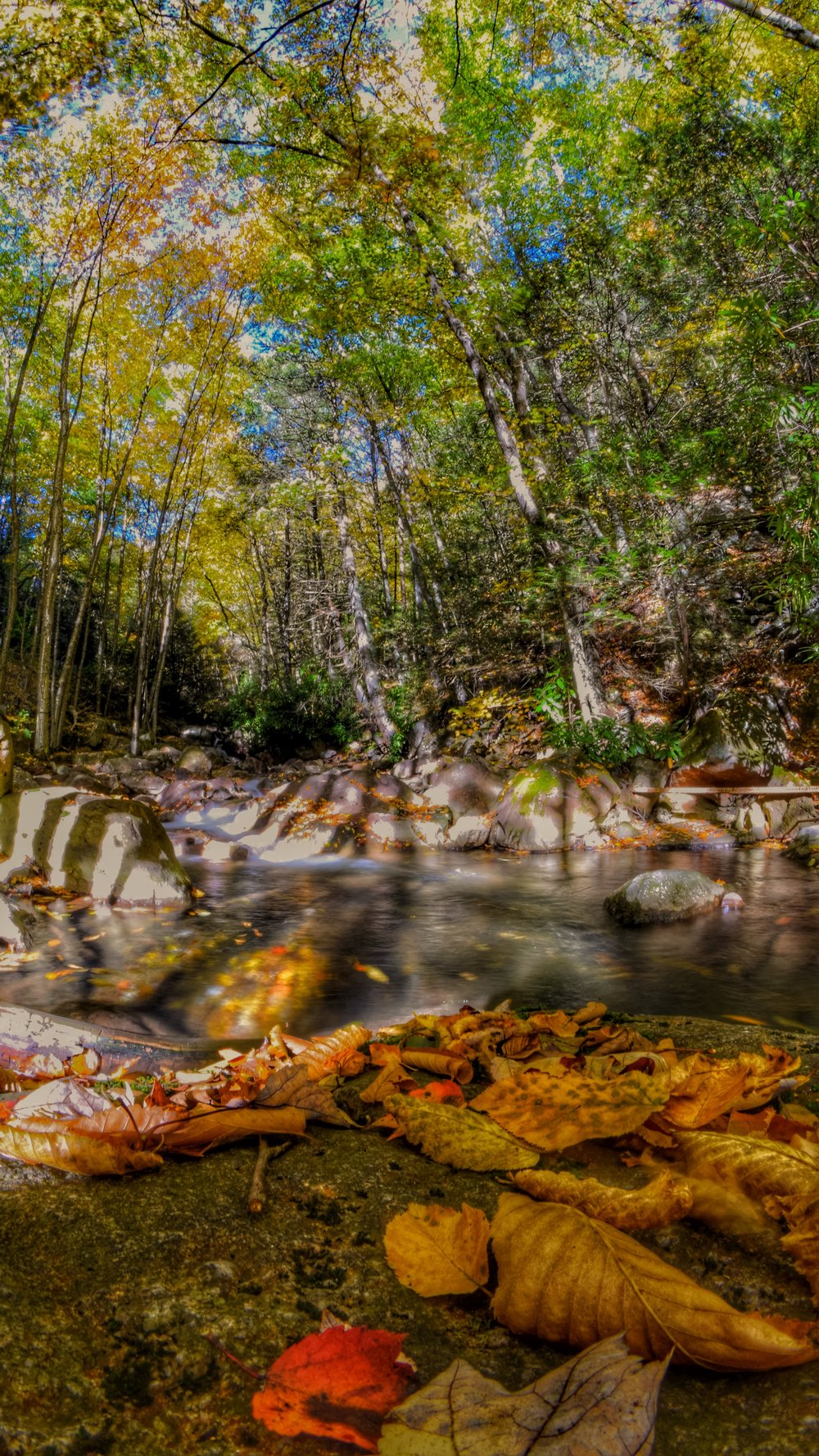 Lehigh Gorge State Park, Rockport