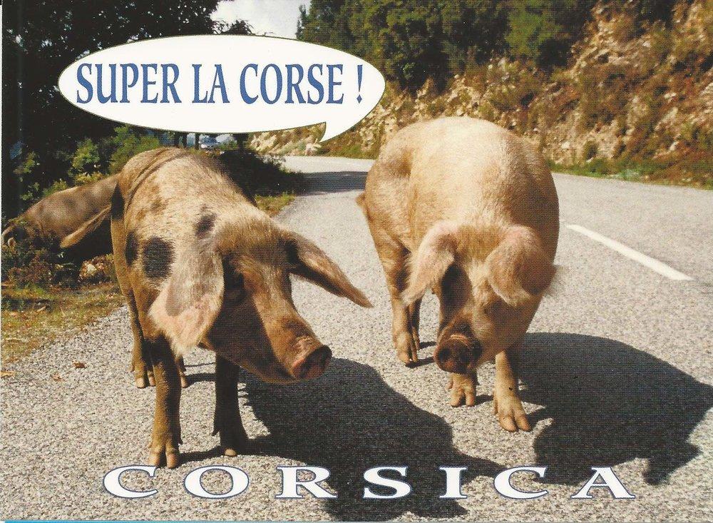 CartesPostales_Corse_coll.Limongi_1.1.jpg