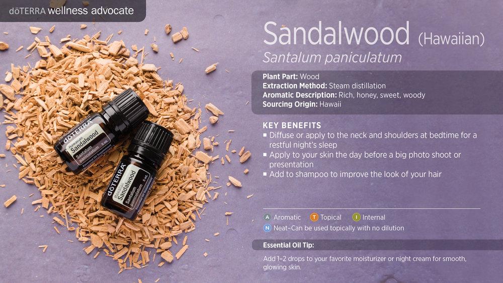 Hawaiian Sandalwood.jpg