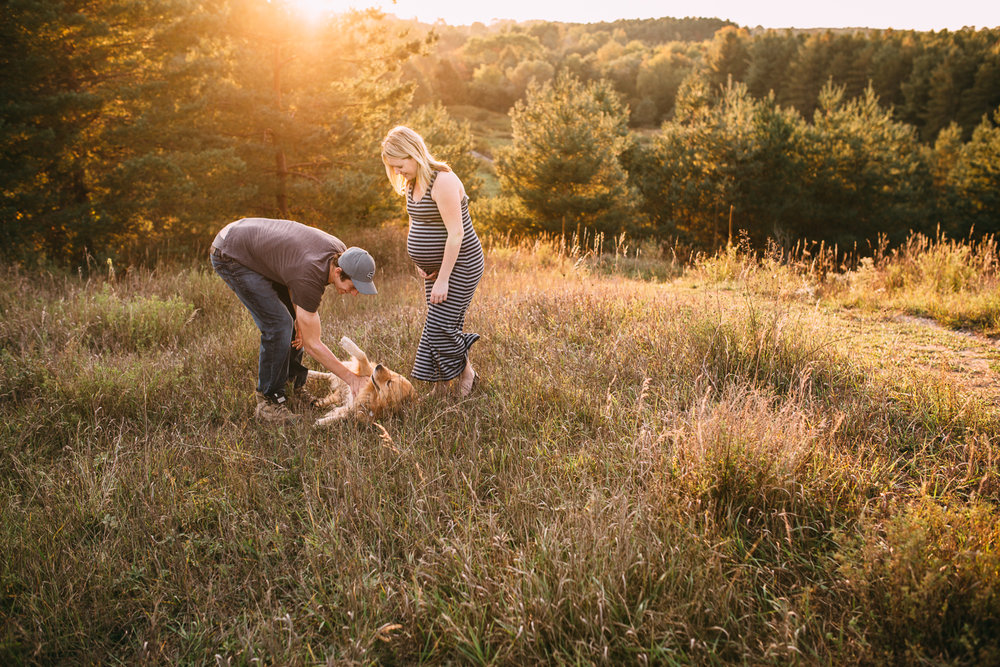couple plays in field with golden retriever dog wife is pregnant - Stouffville bump photos