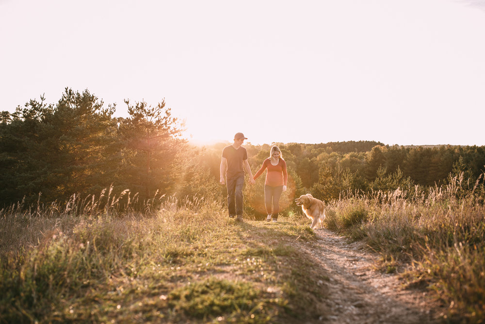 expectant couple walks in field with golden retriever dog wife is pregnant - Newmarket baby bump photos