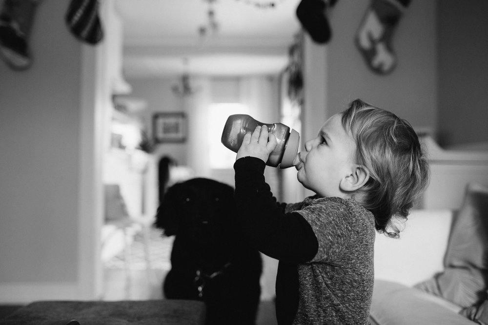 2 year old toddler boy drinking from sippy cup {Toronto Family Photographer}
