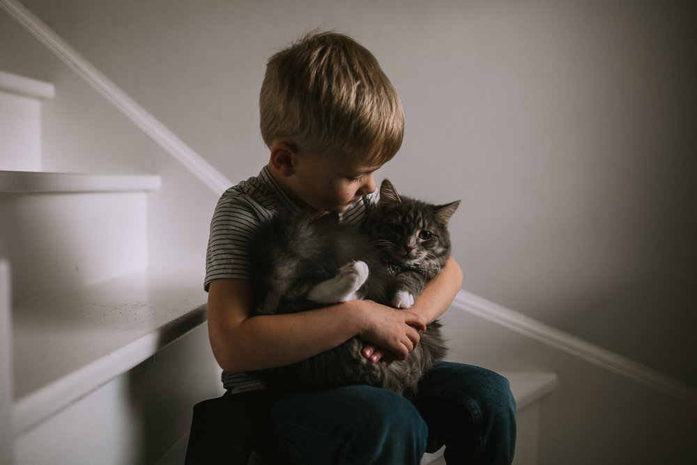 4 year old blonde boy snuggles and kisses pet cat while sitting on stairs - Newmarket lifestyle photos