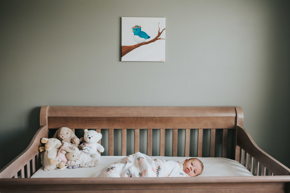 6 week old baby girl lying swaddled in crib - Stouffville in-home photography