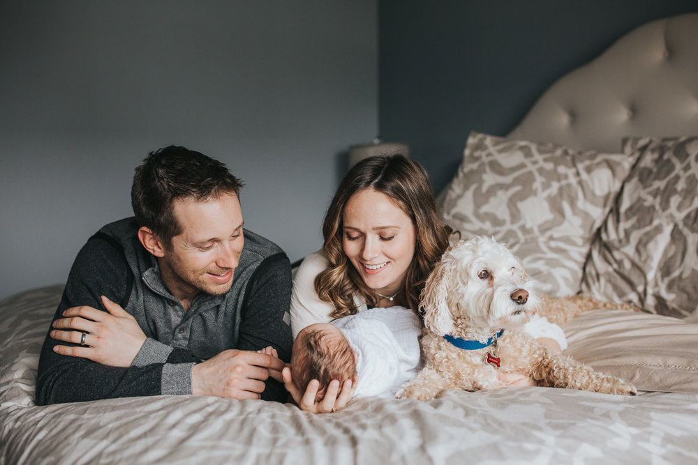 new parents lying on master bed looking at their 2 week old baby girl, family dog looks on - Markham In-Home Photography