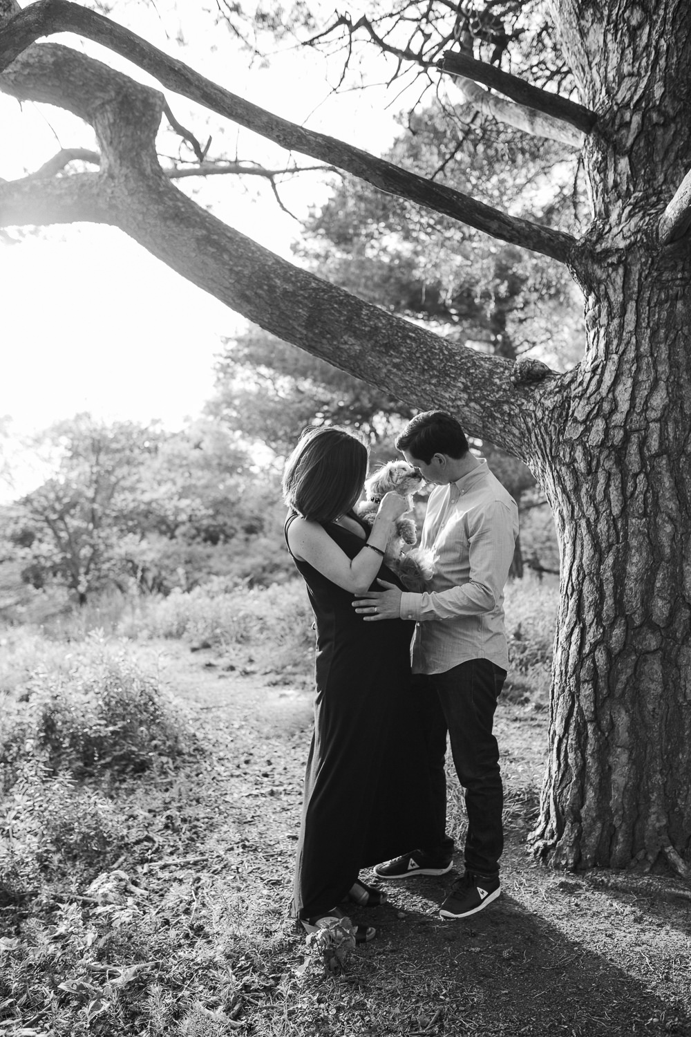 husband and pregnant wife standing under tree holding dog who is kissing man's face  -  Stouffville Lifestyle Photos