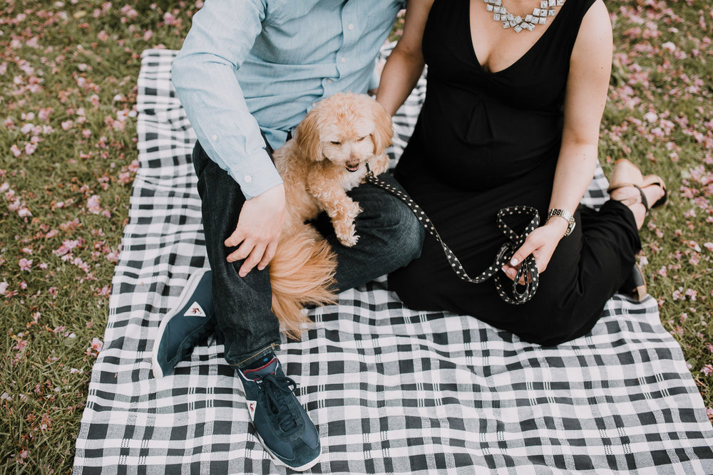 man and pregnant woman sit on black and white checked blanket with golden shi-poo dog in their laps - Newmarket Lifestyle Photos