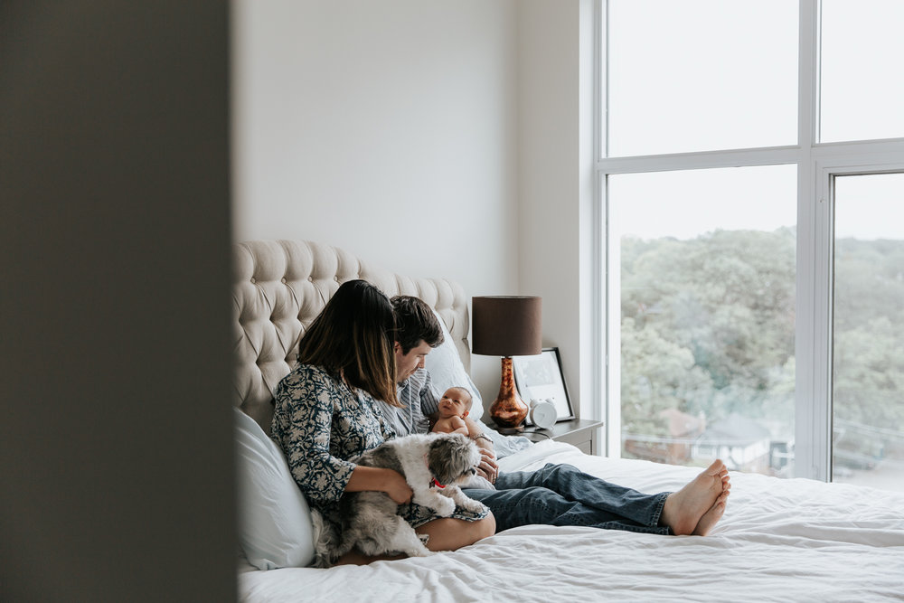new parents sitting on master bed holding 2 week old baby girl and shitzu dog - Stouffville Lifestyle Photography