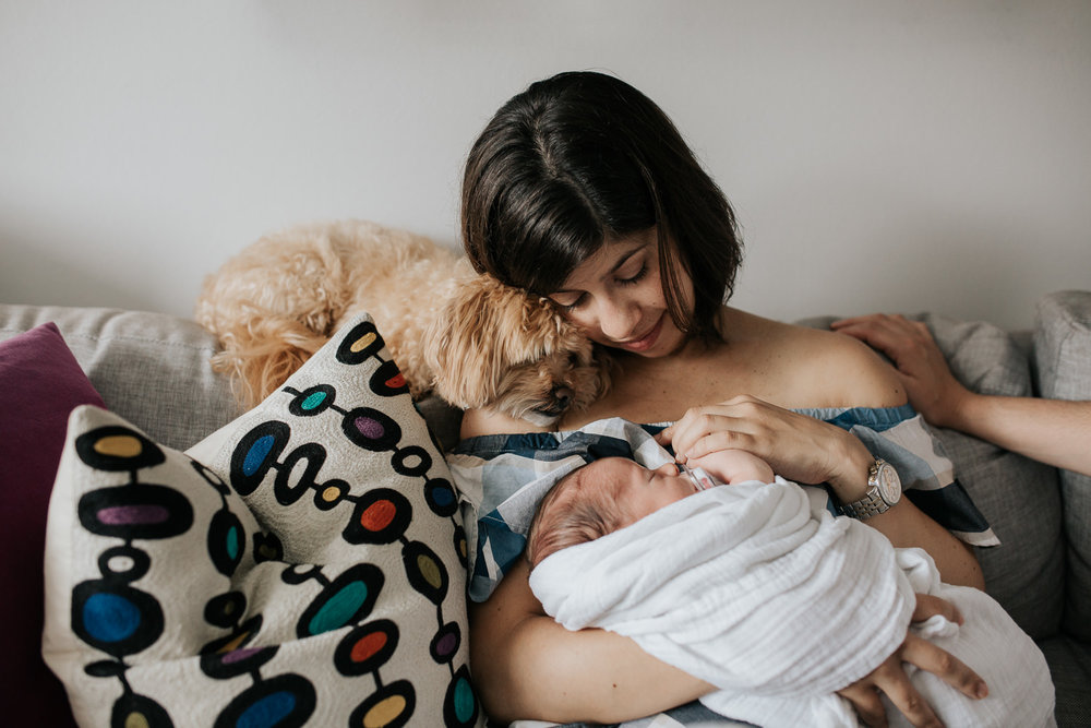 new mother with short brown hair sitting on couch in living room snuggling 2 week old baby boy in white swaddle and leaning head against golden dog - Stouffville In-Home Photos