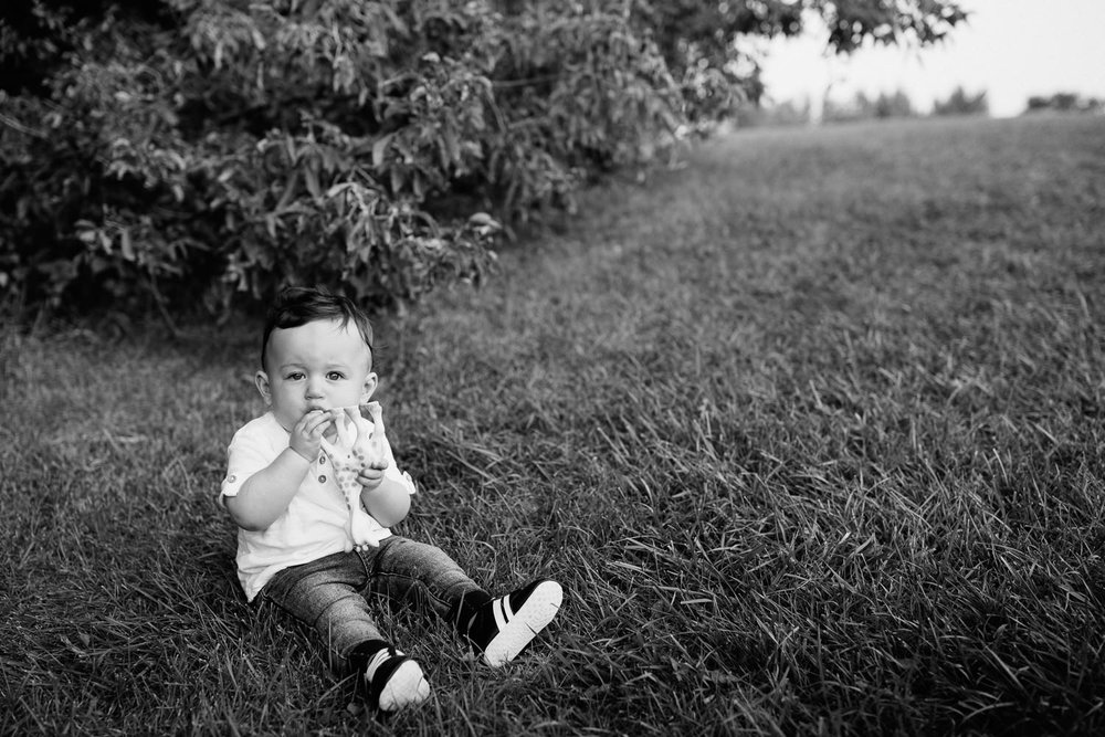 9 month old baby boy with dark hair wearing white t-shirt, jeans and sneakers sitting on grass chewing on Sophie the giraffe, looking at camera - Stouffville Lifestyle Photos