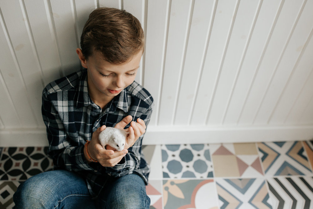 9 year old boy in plaid shirt with light brown hair sitting on colourful tile floor, leaning against wall, holding and looking at white hamster in his hands - Stouffville In-Home Photography