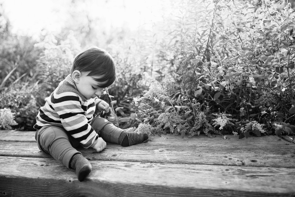 1 year old baby boy with brown hair wearing striped sweater sitting on wooden bench in front of flowers, looking down reaching for bench, setting sun behind him - Markham Golden Hour Photography