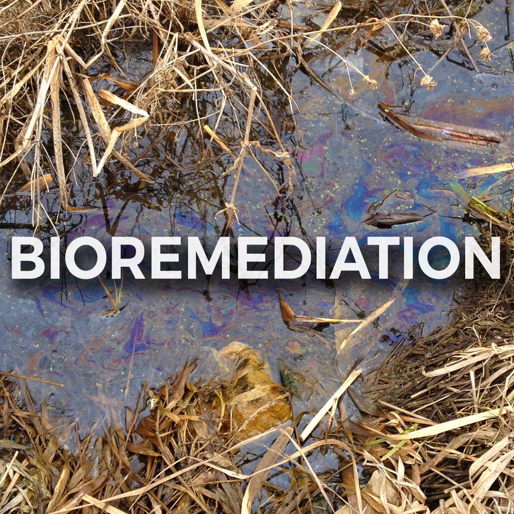 biobox.jpg