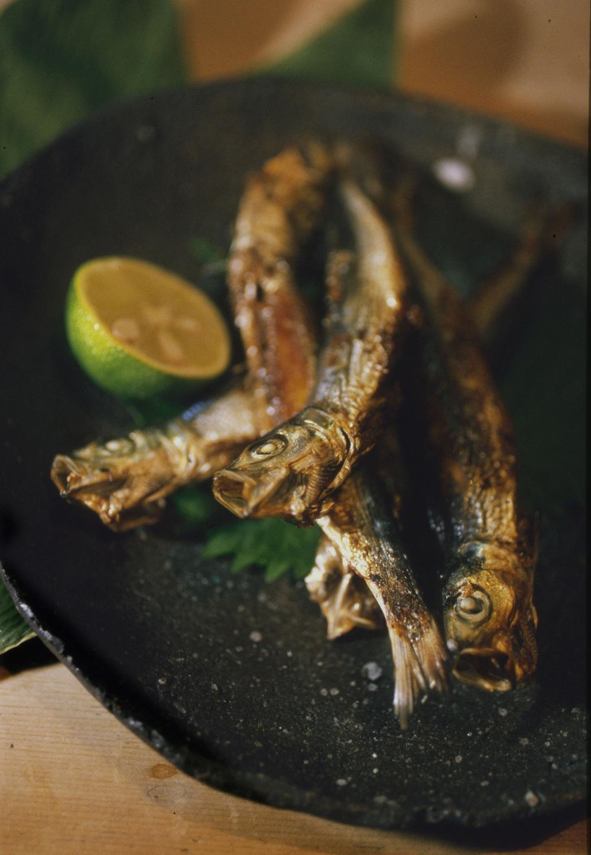 Japan Sardines copy.jpg