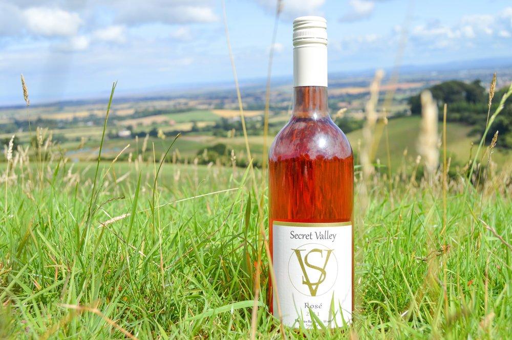 wine _ view.jpg