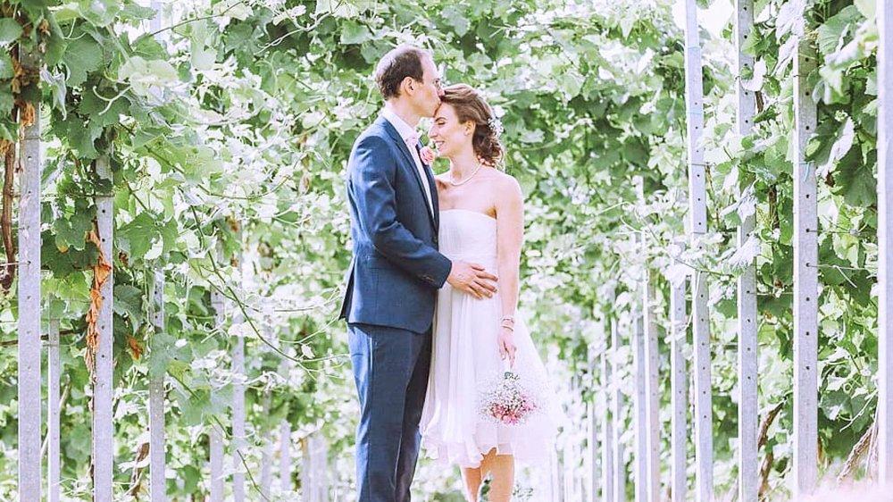 Wedding vineyard.jpg