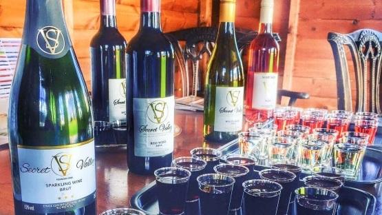 wine+tasting.jpg