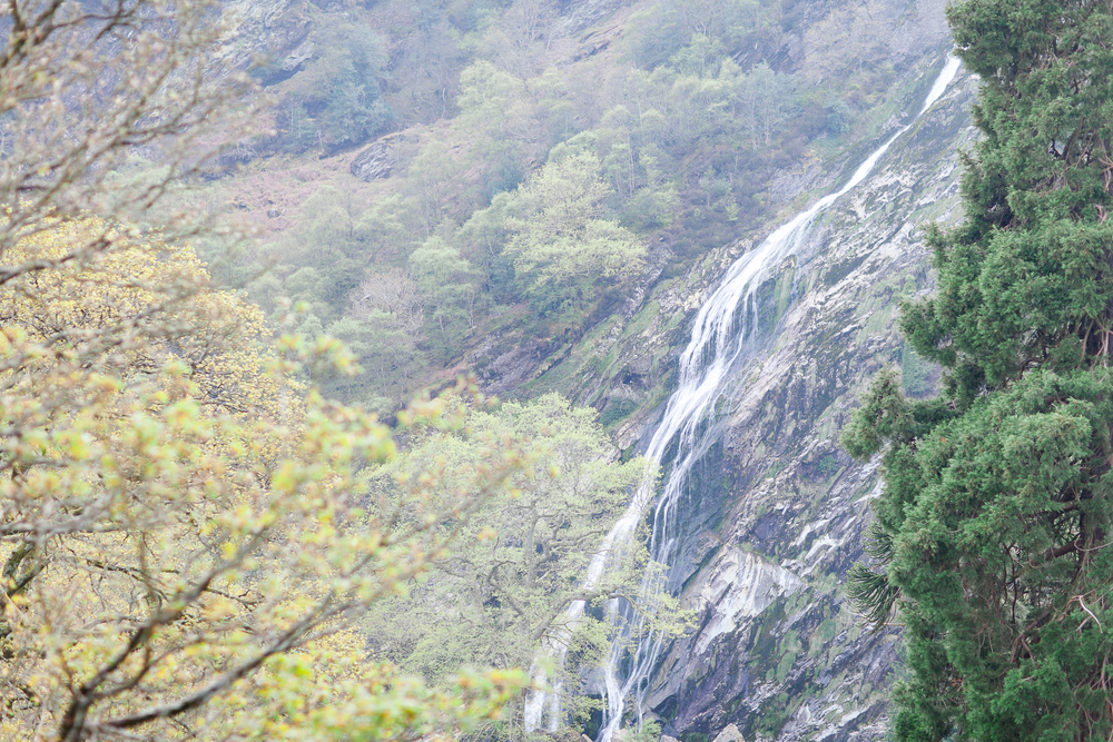 Powerscourt Waterfall Enniskerry