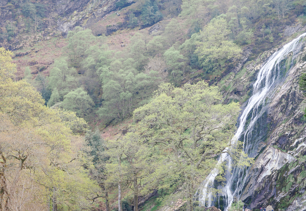 Powerscourt Waterfall Enniskerry photos