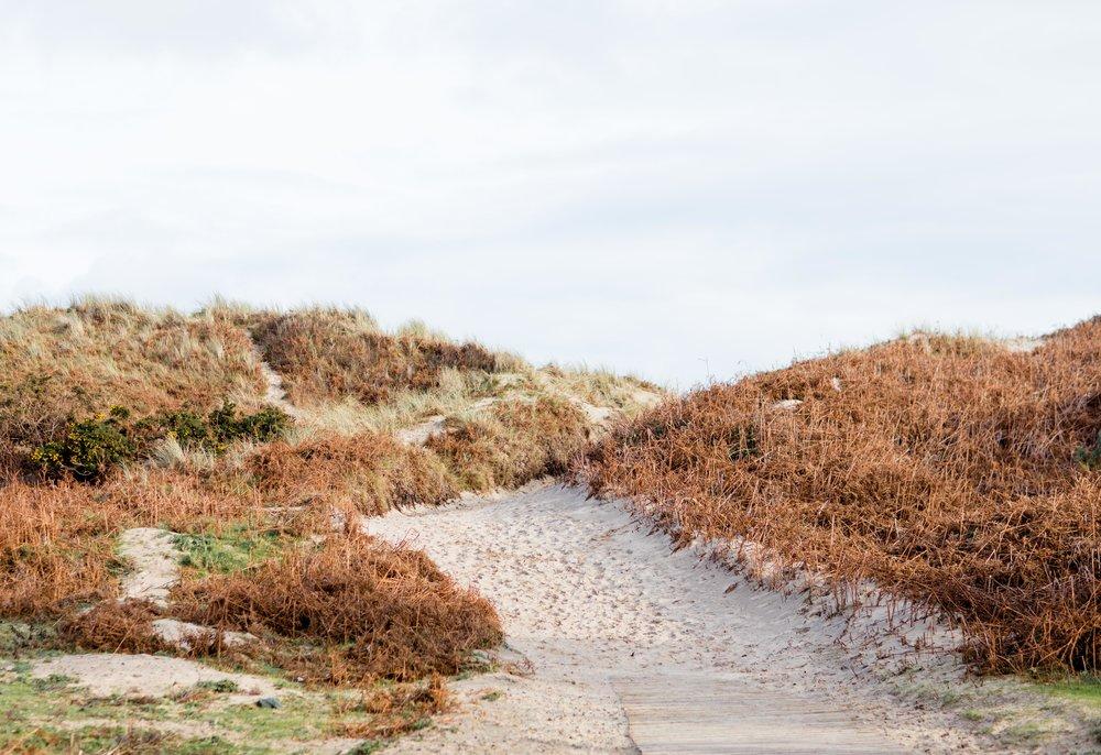 Sandy beach in february brittas bay ireland