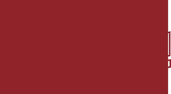 Bio — Aaron Lee Tasjan