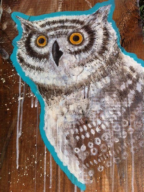 sean vali owl