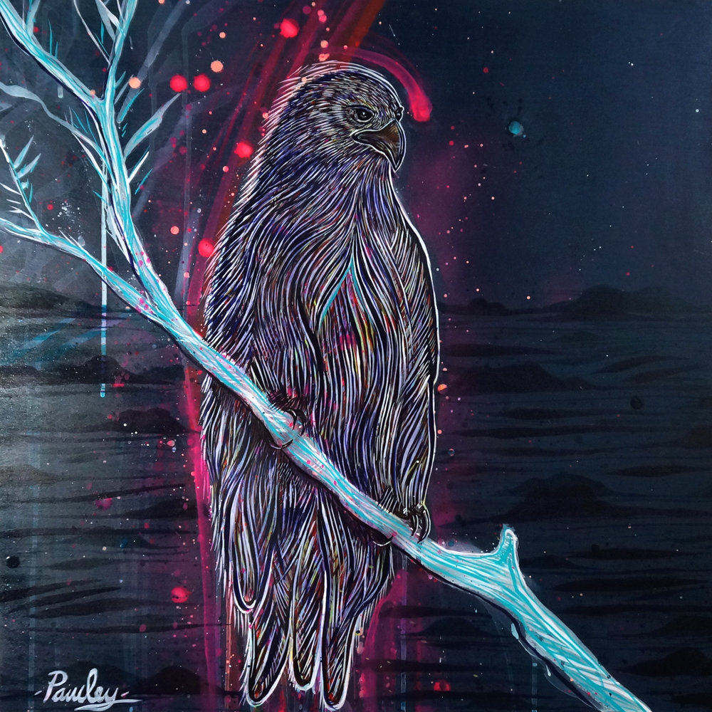 Jason Pawley - Night hawk