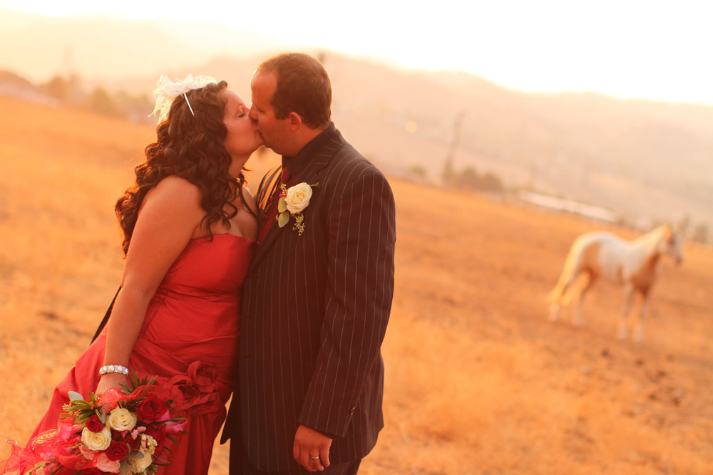 wpid-Wedding-at-Dunrovin-Ranch-Lolo-Montana-7737.jpg