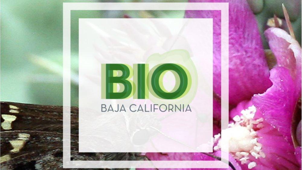 - La misión de biobc.info consiste en ser una fuente única de información, que lista y da acceso a los estudios recientes y trascendentales en el área de las ciencias biológicas y de la Tierra que tienen relación con la Península de Baja California.