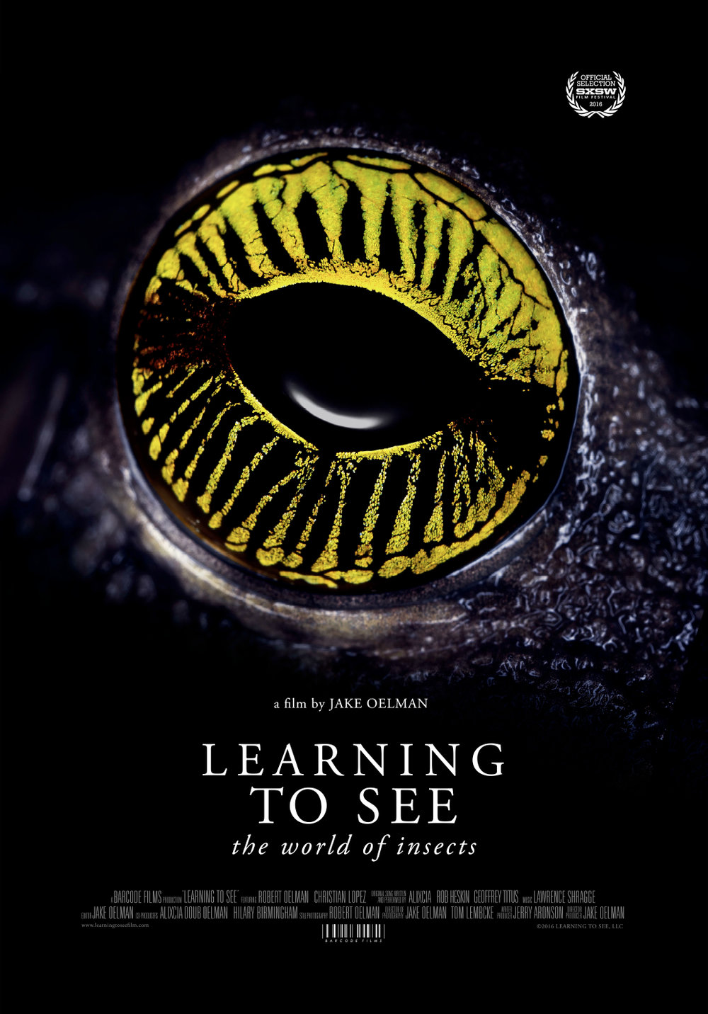 Learning to See poster.jpg